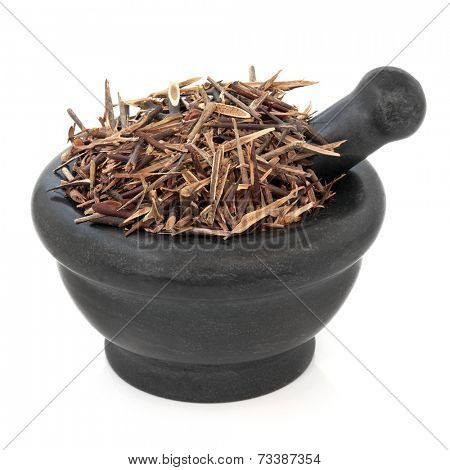 Chinese honey locust herb used in herbal medicine in a marble mortar with pestle over white background. Zao jiao ci.