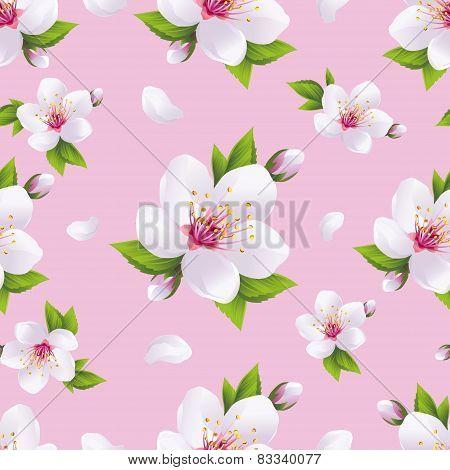 Beautiful Background Seamless Pattern, Sakura Blossom
