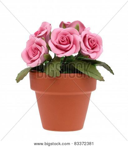 Pink Rose Flowers in Clay Pot