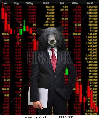 Bear Market, Stock Investment Concept