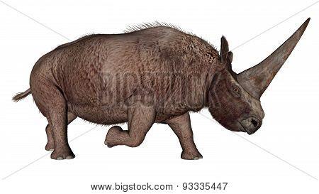 Elasmotherium dinosaur rhinoceros - 3D render