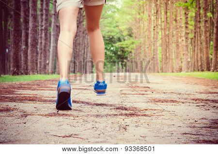 Women's Running Through Pine Tree Forest Trail.