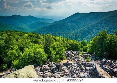 View Of The Blue Ridge Mountains From Blackrock Summit In Shenandoah National Park, Virginia.