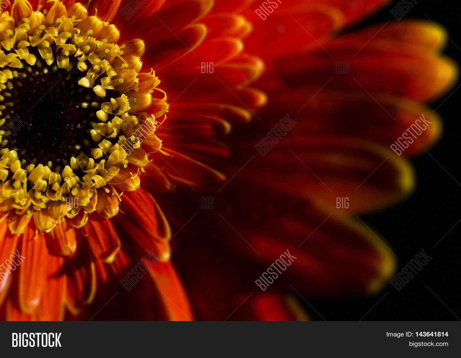 Like Fire Abstract Image Photo Free Trial Bigstock