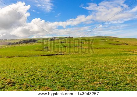 Rural Landscape Near Slope Point, New Zealand