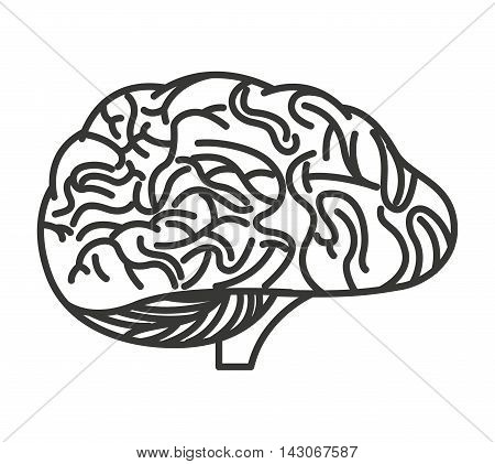 brain storming isolated icon vector illustration design vector illustration design