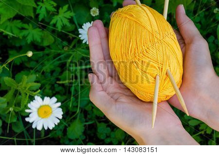 Female Hands Holding A Ball Of Yellow Cotton Yarn And Knitting Needles On Background Green Grass