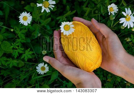 Female Hands Holding A Ball Of Yellow Cotton Yarn