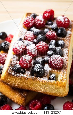 Belgian waffles with fresh berries powdered by caster sugar. Breakfast waffles with blueberry raspberry and blackcurrant.