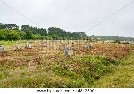 scenery around the Carnac stones a megalithic site in Brittany France