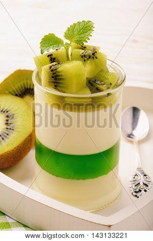 Panna cotta with kiwi jelly and kiwi fruits.
