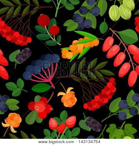Seamless pattern with branches of yellow sea buckthorn, lingonberries, cranberries, cloudberries, rosehig and elderberry twigs on black background