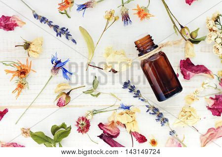 Aromatic essential oil. Top view dropper bottle among colourful dried flowers, medicinal herbs gathering, scattered white wooden table.