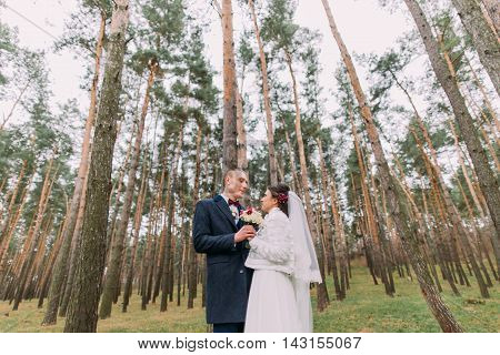 Happy stylish newlywed pair holding hands together posing in the young pine forest.