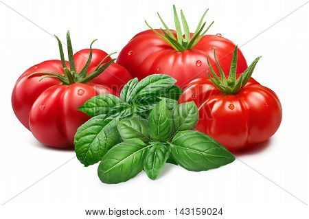 Ribbed Tomatoes With Basil, Paths