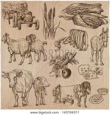 AGRICULTURE - Life of a farmer. Life on the farm . Collection of an hand drawn vector illustrations. Set of freehand sketches. Line art technique.