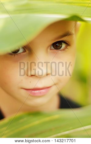 Portrait Of An Adorable Boy In Outdoor.  Small Handsome Boy 7 Ye