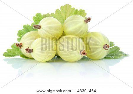 Gooseberries Gooseberry Berries Fresh Fruits Fruit Isolated On White