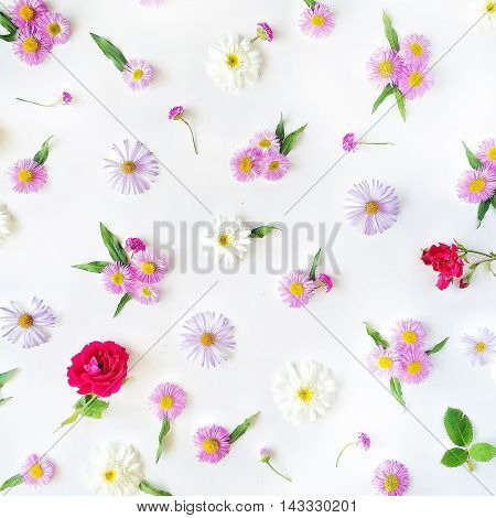 Roses chamomiles and green leaves on white background. Flat lay top view