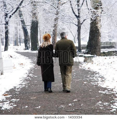 Senior couple walking at the park