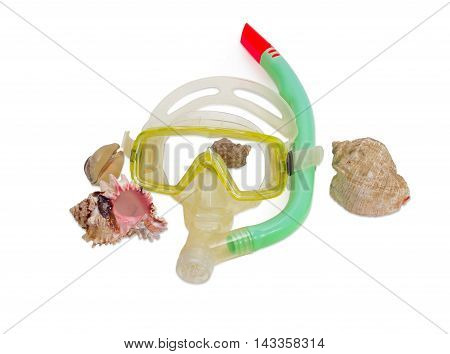 Yellow and white diving mask with green snorkel and several different sea shells on a light background