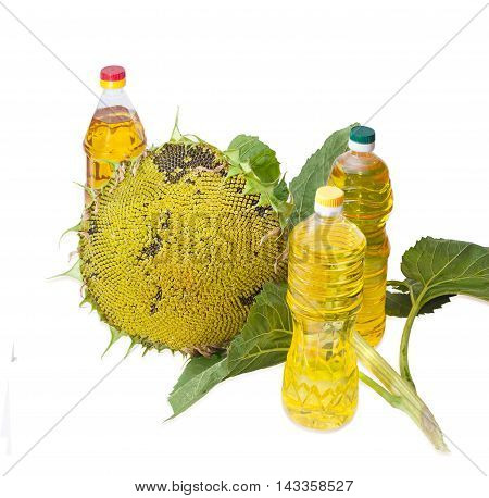 Three plastic bottles of sunflower oil of different variety and stalk with leaves and ripening sunflower head with seeds on a light background