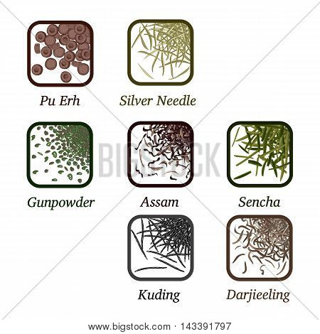 Varieties of tea loose in a square frame poster