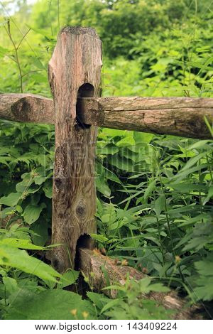 Pictures of old wooden fence on rivate property
