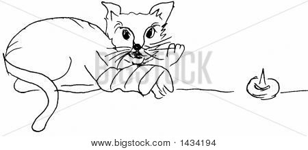 Cat with banaged leg (black & white sketch) poster