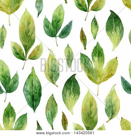 Seamless pattern with green leaves. Watercolor illustration