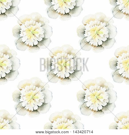Seamless pattern with white peony. Watercolor illustration