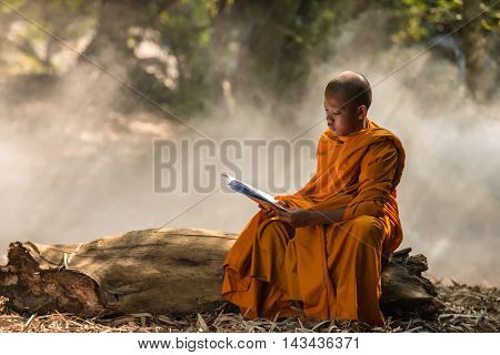 Neophyte reading a book in the forest .