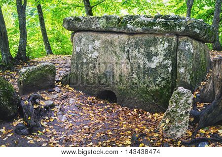 Dolmen In-field Autumn
