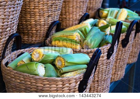 Close up of sweet corn in woven straw rustic baskets. Sunday farmers market background