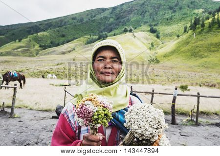 SAVANNA, INDONESIA - 12 AUG - Unidentified elderly local florist flowers with smiling face in Savanna grassland at Mount Bromo, Indonesia on August 12, 2016