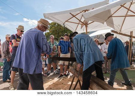 Loggers Cut Wood With A Saw Former Lumberjack