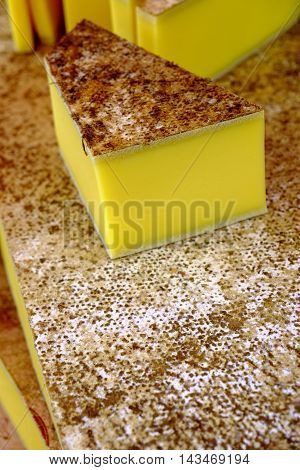 Close up on single cut chunks of cheese with hard casing on top of others for sale
