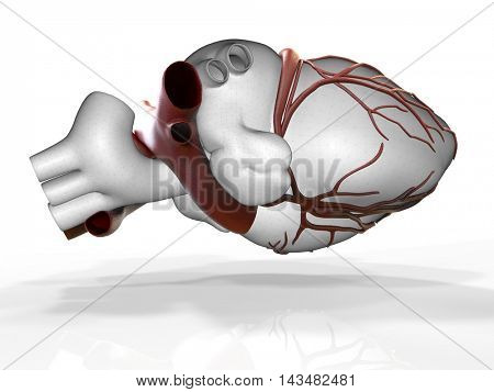 Model of artificial human heart 3d rendering