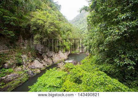 The famous Crystal Cascades near Cairns in Queensland, Australia