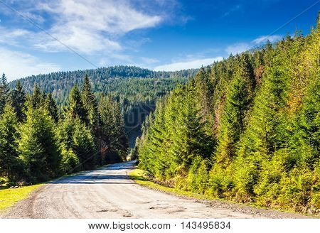 Mountain Road In Autumn Forest