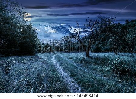 Winter meets summer composite landscape. Curve road through rural valley with trees and green grass going to forest in mountains with snowy peak under cloudy sky at night in full moon light
