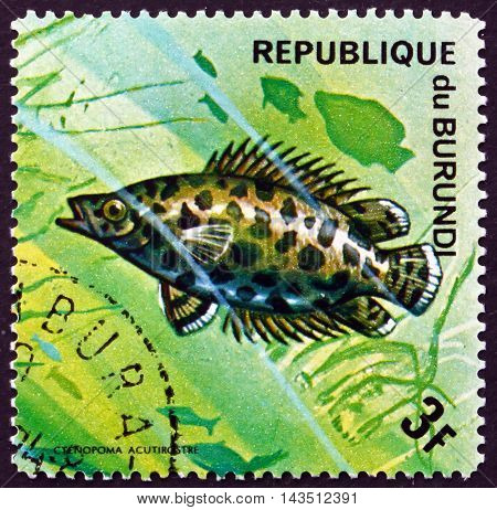 BURUNDI - CIRCA 1974: a stamp printed in Burundi shows Leopard Bush Fish Ctenopoma Acutirostre Freshwater Fish circa 1974