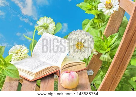 Apple and open book on wooden garden chair among the flowering white zinnias in the garden on a summer day against the blue sky close-up. Selective focus
