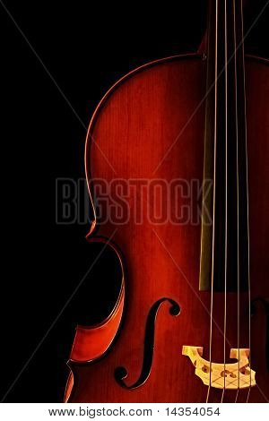 Cello, in close-up with black background.  Natural warm light.