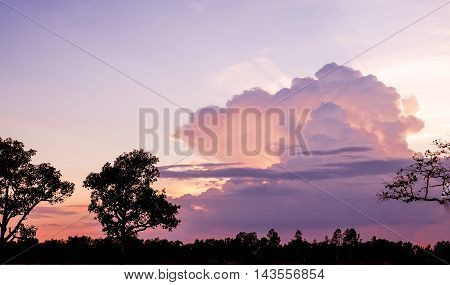 Landscape View Of Sunset Behind Big Cloud With Tree At Foreground In Evening