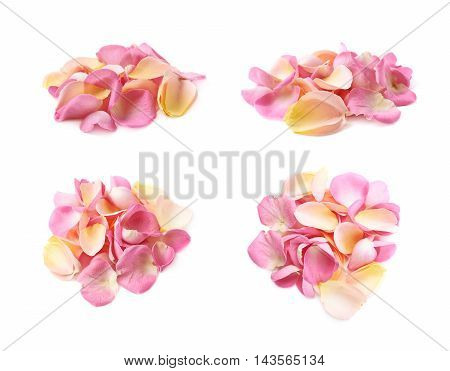 Pile of multiple pink rose petals isolated over the white background, set of four different foreshortenings