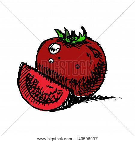 Tomatoes Vector Illustration.