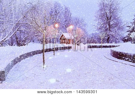Winter landscape with snowflakes. Winter view with falling snow. Winter night landscape - small house among the illuminated frosty winter trees. Winter night in the city- night winter view
