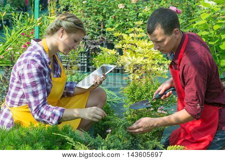 couple takes care of the plants and keeps records on the tablet