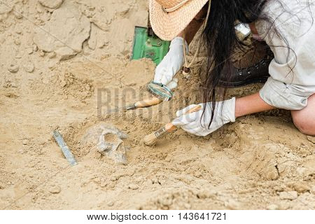 Anthropologist unearthing ancient human scull, horizontal image